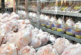 قیمت مرغ به ثبات میرسد و  با نرخ مصوب عرضه میشود