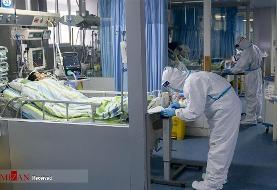 چند نکته مهم درباره ویروس مرگبار کرونا