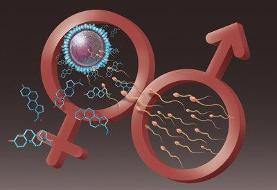 ارزیابی میزان باروری مردان در خانه با گجت ساخت محققان کشور