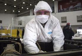 ویروس کرونا؛ سومین روز کاهش آمار مبتلایان در چین