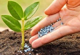 بررسی یک تجربه موفق بینالمللی در کشاورزی
