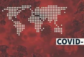 ۲۴۶۲ نفر قربانی کرونا در جهان