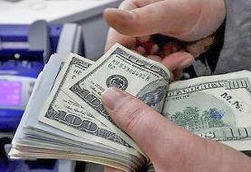 هشدار رئیس بانک مرکزی درباره هیجانات بازار ارز پس از ورود ایران به لیست سیاه FATF