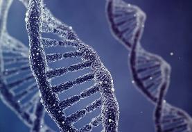 نمونه دیانای مجرمان گرفته میشود | ایجاد پروفایل ژنتیکی برای مشاغل حساس و پرخطر