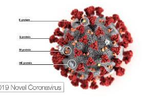 آمریکا آزمایش یک داروی تجربی را برای درمان عفونت ویروس کورونا را آغاز ...