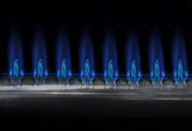 مشترکان گاز بهینه مصرف کنند/شرایط سختی را برای تامین گاز تجربه کردیم