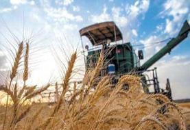 وزارت جهاد کشاورزی حمایت از تولید داخل را در دستور کار قرار دهد