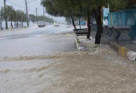 کاهش ۵۷ درصدی بارش بهمن در استان تهران