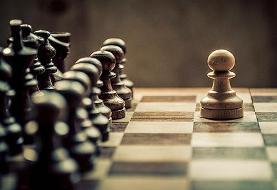 سیزدهمی ایدنی در مسابقات شطرنج ایرفلوت روسیه