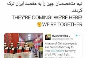 متخصصان چینی راهی ایران شدند
