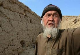 آمریکا و طالبان برای امضای توافقنامه صلح آماده میشوند