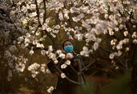 China sees continued rise in imported coronavirus cases