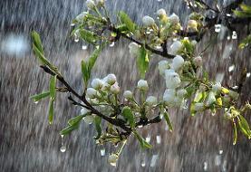 بارش باران در اکثر استانهای کشور