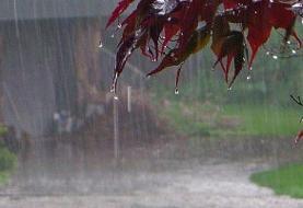 بارش باران در غالب مناطق کشور