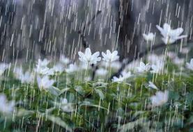 پیشبینی بارش برف و باران در ارتفاعات قزوین