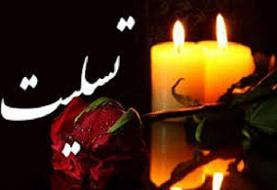 تشکر خانوده مادر شهید «محمدرضا لولاچیان» از همدردی مقامات کشور