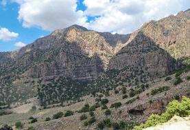 ورود به عرصههای جنگلی و مرتعی کرمان ممنوع شد