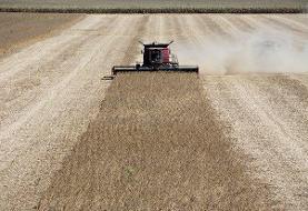 شیوع کرونا به کشاورزان آمریکایی آسیب زده است