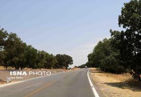 فرماندار دلگان: نداشتن راه مناسب چالش جدی عدم توسعه یافتگی منطقه است