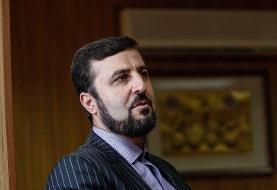 غریب آبادی: آژانس تجهیزات تشخیص سریع کرونا در اختیار ایران قرار می دهد
