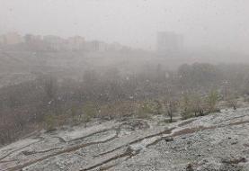 از شایعه تا واقعیت طوفان برفی در مازندران