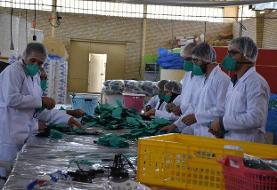 توزیع رایگان ۱۶۴ هزار ماسک N۹۵ در فارس