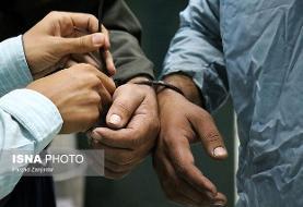 دستگیری ۳مرد و ۱۲ زن در یکی از باغهای شهریار در سیزدهبدر
