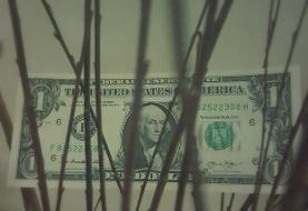 دلار جهید
