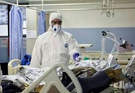 تقدیر سخنگوی دولت از زحمات کادر درمانی