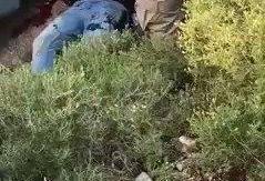 (تصویر) فرمانده ارشد حزب الله در لبنان ترور شد