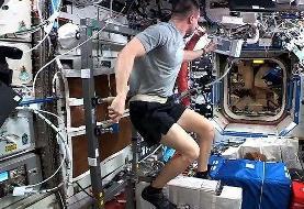تصاویر | فضانوردان به مردم در قرنطینه اینگونه انگیزه میدهند