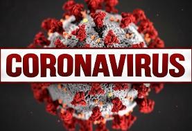 ناقلین بدون علامت، متهمان ردیف اول انتقال کروناویروس جدید