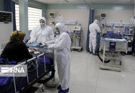 زالی: شیب بیماری کرونا در تهران همچنان صعودی است