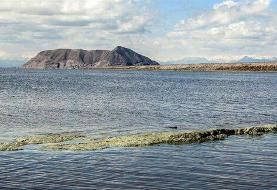 سال گذشته چه برنامههایی برای احیای دریاچه ارومیه انجام شد؟