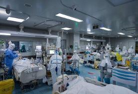 زالی: مراجعه به بیمارستانهای تهران افزایش یافته است، آثار رفتار منجر به افزایش آمار کرونا تا دو هفته بعد بروز میکند