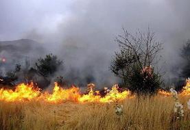 آمادهباش دستگاههای البرز برای پیشگیری از آتشسوزی مراتع