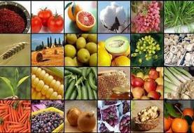 مدیرعامل صندوق حمایت از توسعه سرمایه گذاری کشاورزی منصوب شد