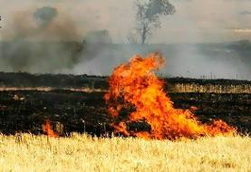 آتشسوزی در مراتع شهرستان پلدختر مهار شد
