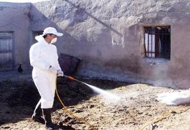 پیشگیری از تب شیوع کریمه کنگو در چهارمحال و بختیاری
