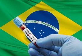 برزیل، دومین کانون شیوع کرونا در جهان