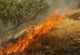 آتشسوزی مراتع گچساران همچنان ادامه دارد