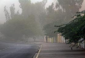 وزش باد شدید و گرد و خاک در برخی مناطق شرق کشور
