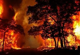 چهارمین روز آتشسوزی در جنگلهای گچساران