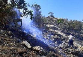 آتشسوزی در جنگلها و مراتع گچساران مهار شد