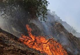 آتش سوزی مجدد جنگلهای گچساران