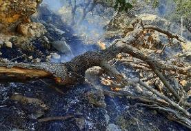 نیروها تا ۲۴ ساعت در منطقه آتشسوزی جنگلهای گچساران حضور دارند