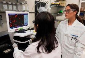آزمایش واکسن کرونا روی مردم استرالیا انجام شد/ جزییات