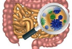 آلاینده های زیست محیطی موجب تغییر میکروبیوم های روده می شوند