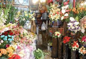 تسهیلات دهی به ۱۲ رسته گل و گیاه زینتی آسیب دیده از کرونا