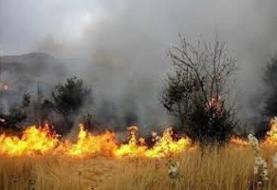 ۱۸ هکتار از اراضی کشاورزی پیشوا در آتش سوخت